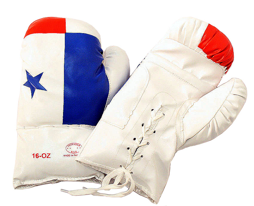 Panama 16 Oz. Boxing Gloves 1 Pair Vinyl Leather Glove Practice & Training