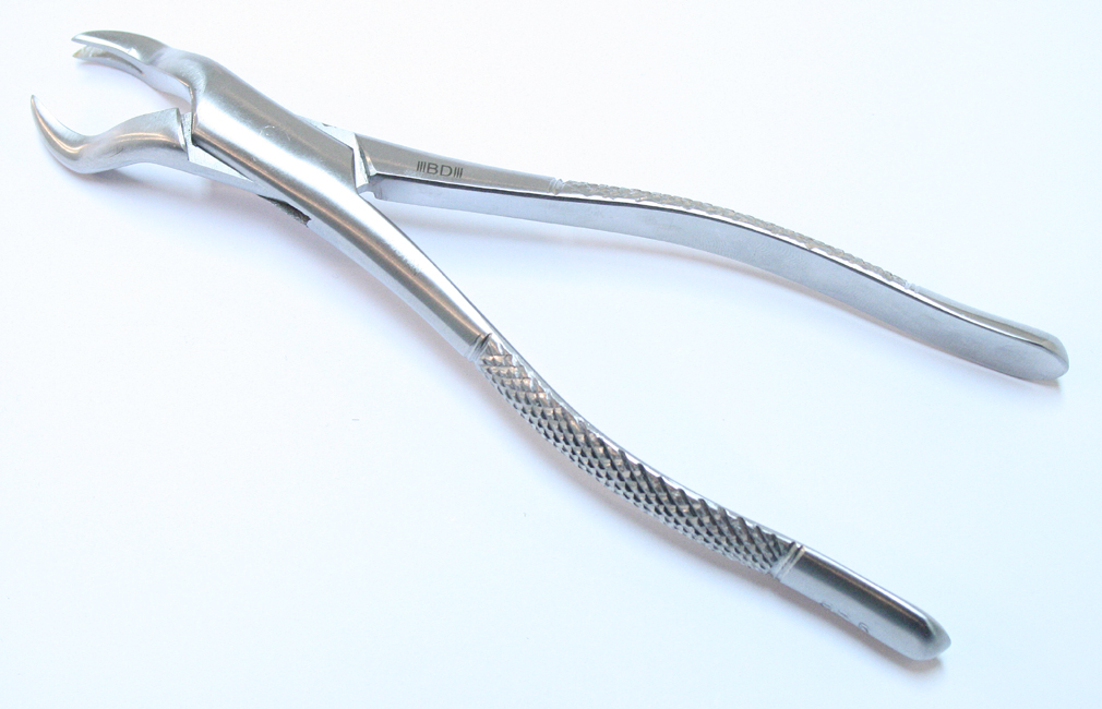 88R Dental Instrument Extracting Forceps Stainless Steel