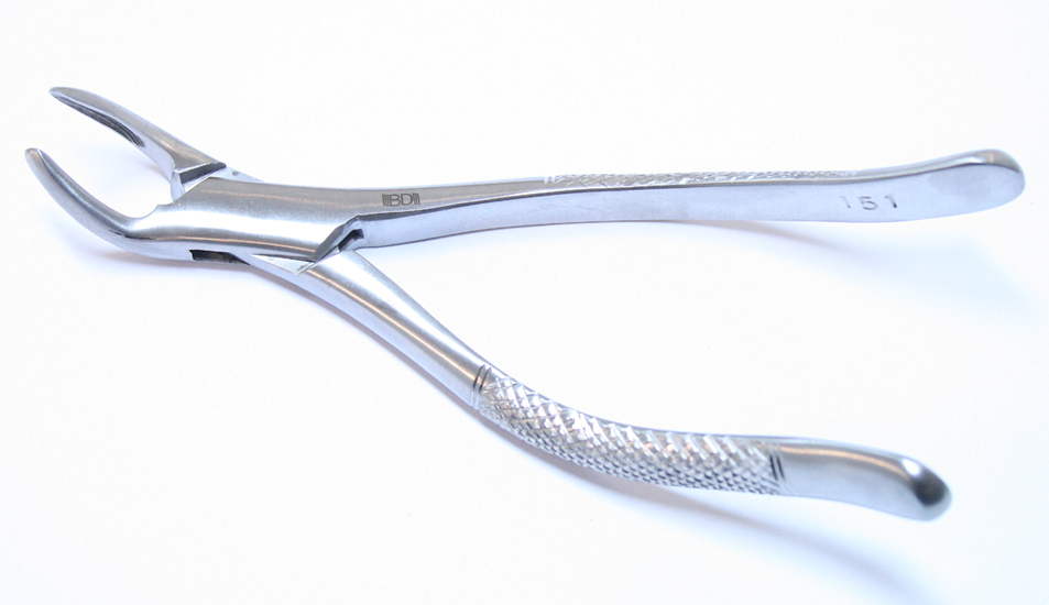 1pc Dental Instrument 151 Extracting Forceps Stainless Steel