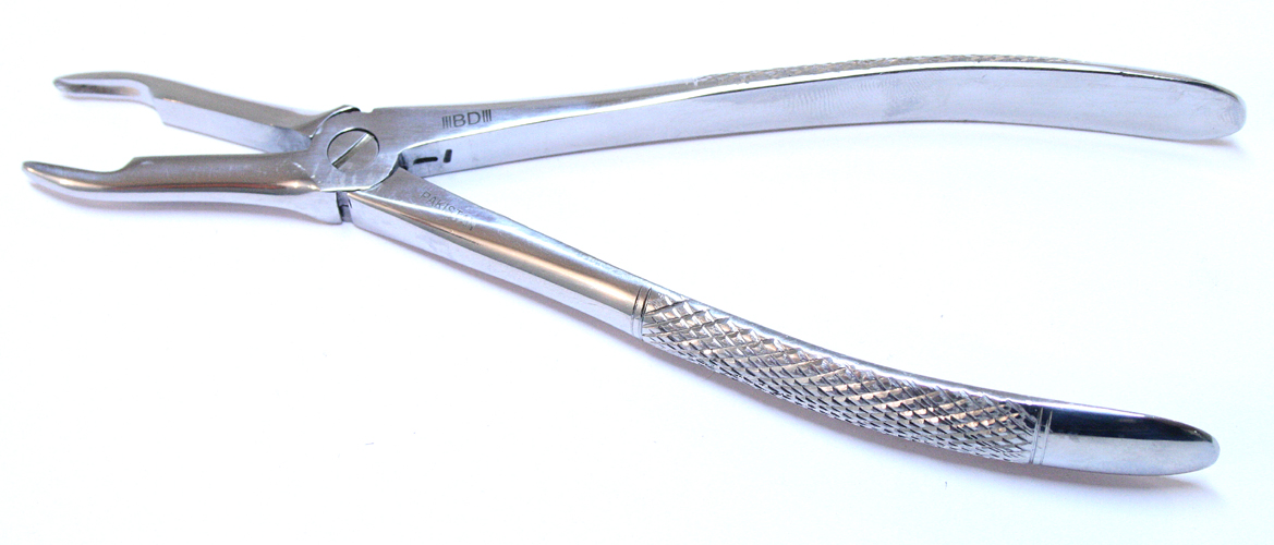 1pc Dental Instrument 44 Extracting Forceps Stainless Steel