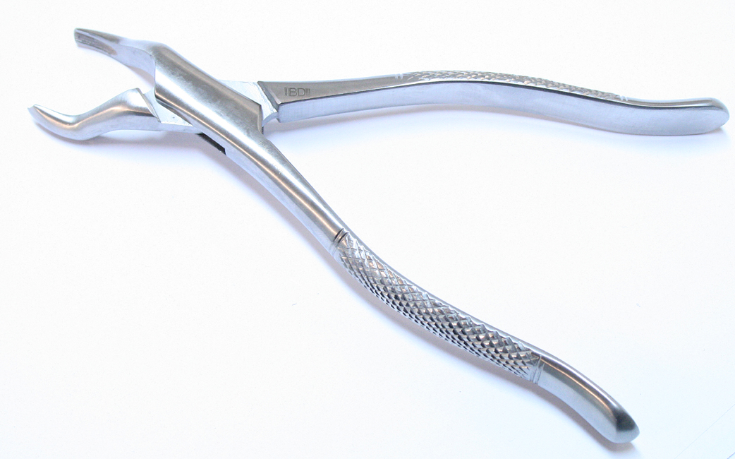 1pc Dental Instrument Extracting 53R Forceps Stainless Steel